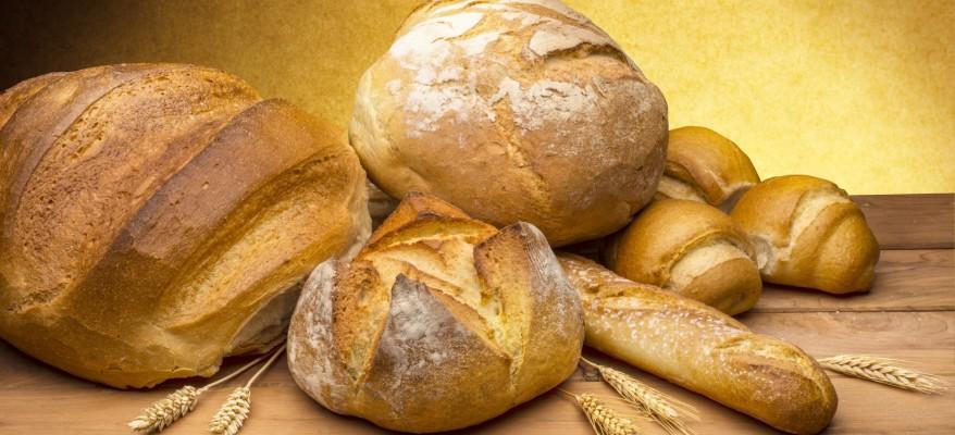 Giubileo: più pane per tutti!