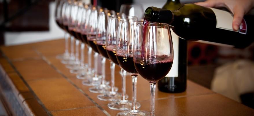 Non solo sensi: il vino è un progetto