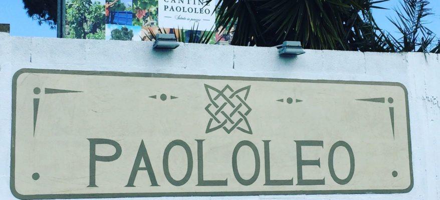 Paololeo: una famiglia del vino tra storia e futuro del Salento