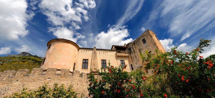 A Venafro, un Parco per tutelare l'olivo secolare