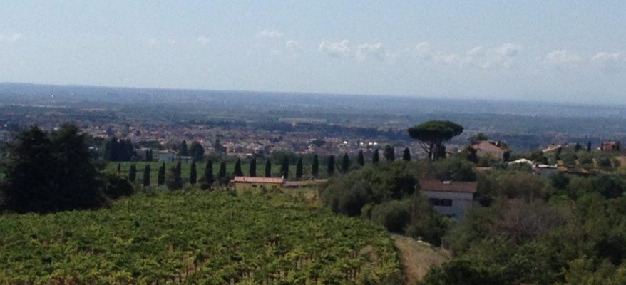 Castel de Paolis: vini di carattere con vista su Roma