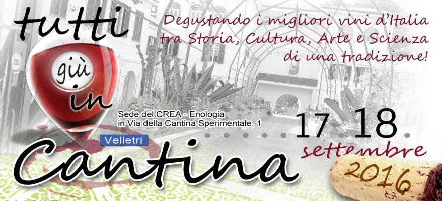 """""""Tutti giù in cantina"""": a Velletri 100 vini tra reading e installazioni artistiche"""