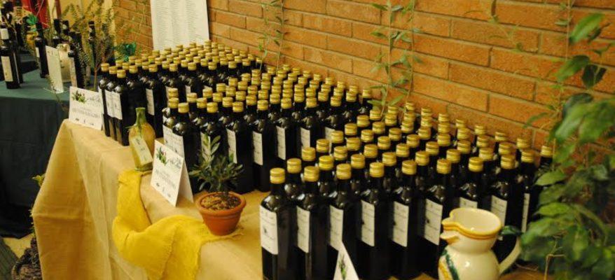Eccellenze dell'olio italiano: in gara 174 etichette