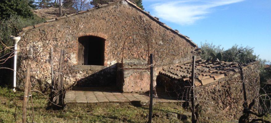 Costantino: una bella selezione di vini dell'Etna
