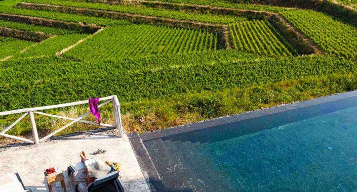 Etna: quel teatro di vigne sul mare. Radici e novità per il Barone di Villagrande