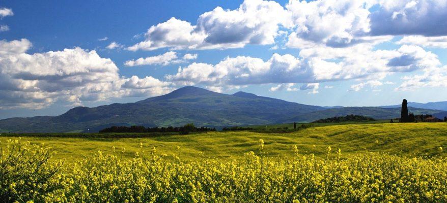 Castagne, funghi, olio e vino: sul Monte Amiata a tutto gusto