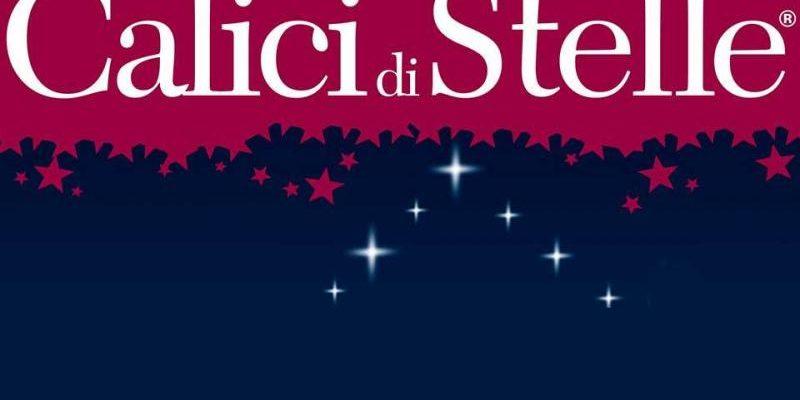 Calici di stelle: 1 milione di appassionati tra bottiglie e stelle cadenti