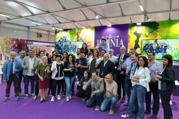 Taurasi, Fiano e Greco: tre docg per il rilancio del brand Irpinia