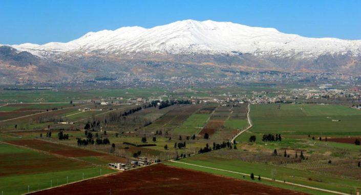 Il Libano del vino è in crescita