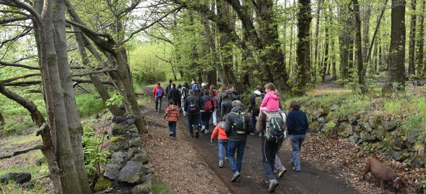 Etna, effetto Unesco sull'enoturismo