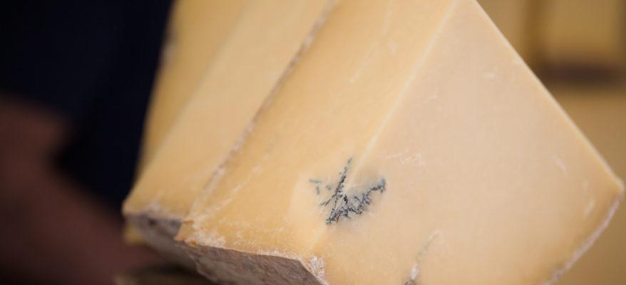 Il cibo è cultura a Cheese 2019