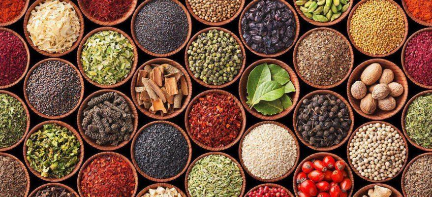 """Oggi è il World Food Day: il """"Cibo"""" del mondo in mostra"""
