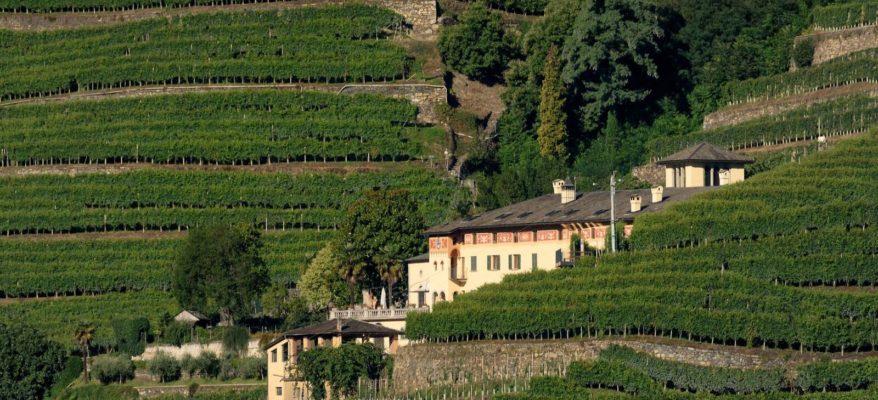 """Unesco, la Lombardia promuove i vini """"eroici"""""""