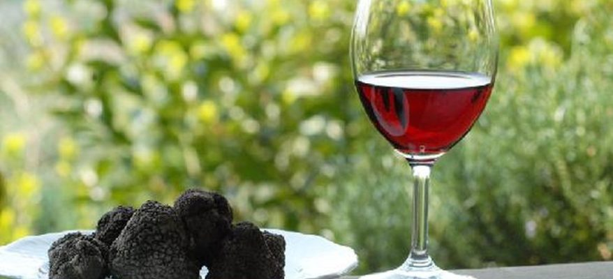 Tartufo e vino: un patto in vista di Expo 2020