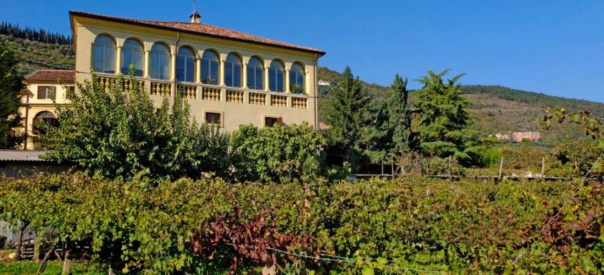 In classe dopo il lockdown: la cantina Valpantena premia gli istituti primari di Verona