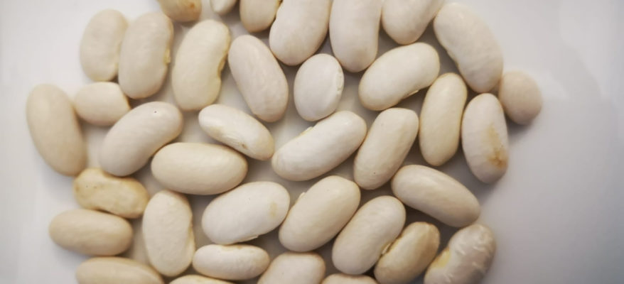 I fagioli di Cortale nuovo presidio Slow Food