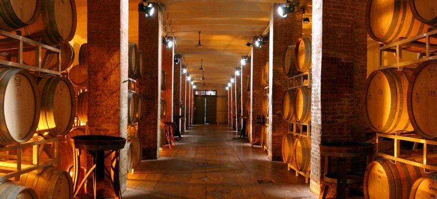 Esce Cantine d'Italia 2021: la Guida per l'Enoturista di Go Wine