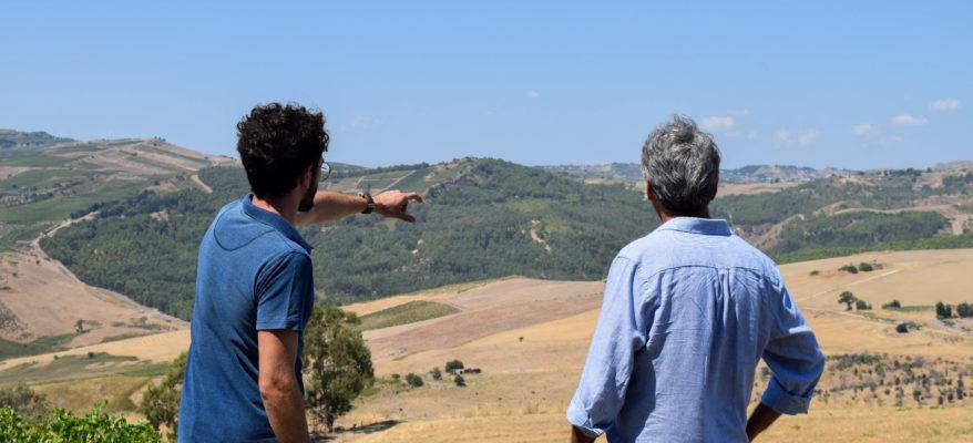 A 50 anni dal terremoto, la Salaparuta Valley riparte dal vino